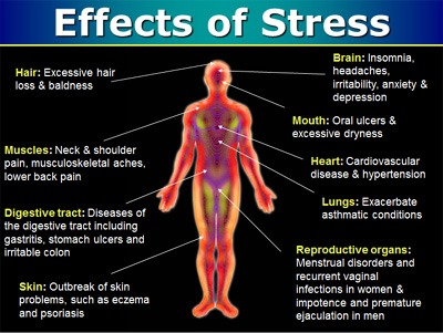 stress-effects